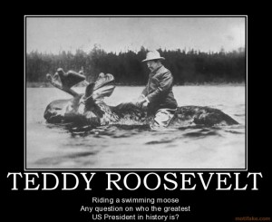 teddy-roosevelt-teddy-roosevelt-demotivational-poster-1258993824